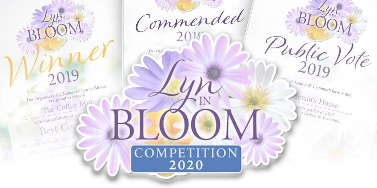 Bloom-Comp-Header