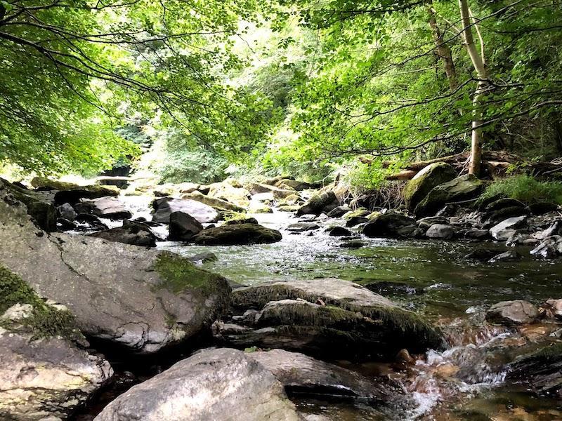 Rivers of Watersmeet 3 1580337154