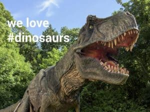 wildlife   dinosaur park 1