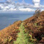 Lynton Lynmouth Autumn Coast Path