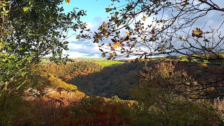 Lynton Lynmouth Autumn Heddon Valley Walk