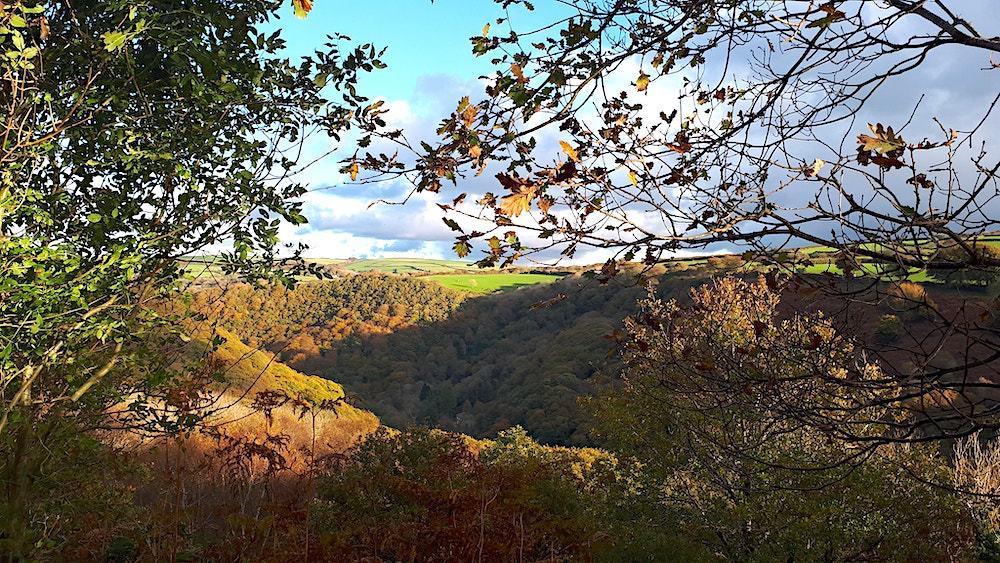 Lynton Lynmouth Autumn Heddon Valley Walk